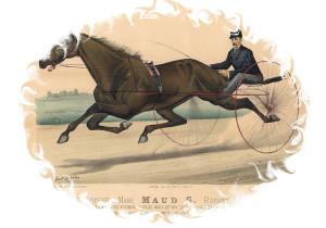 Lady Maud 1881 Litho framed