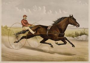 Nelson 1891 litho