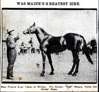 C.H. Nelson — Fame & Glory — Shame & Redemption — The Story of Nelson 4209 — Maine's 1890 Champion Trotting Stallion