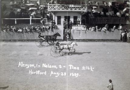 Disgrace — Charter Oak Park Stakes Race, August 28, 1889
