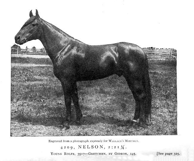 Nelson's Obituary