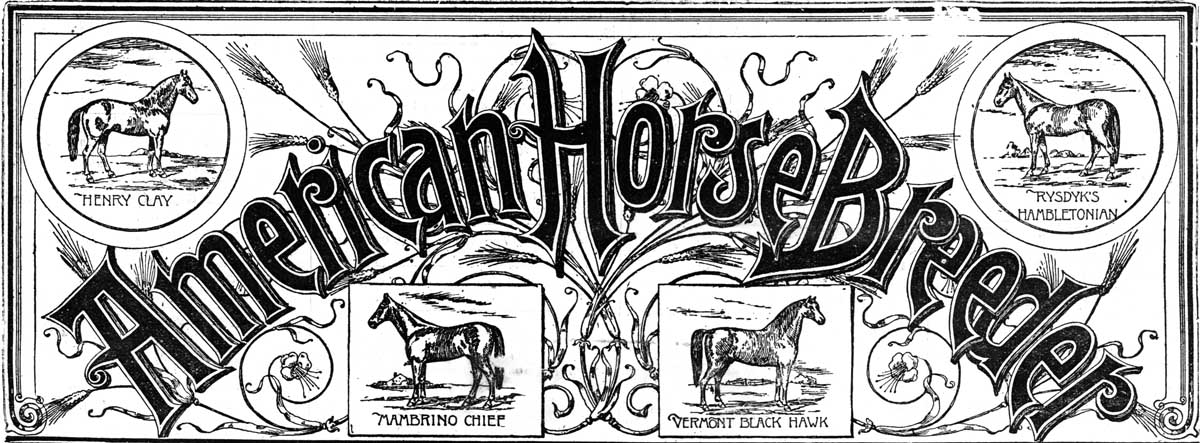 American Horse Breeders — January 25, 1998 Issue