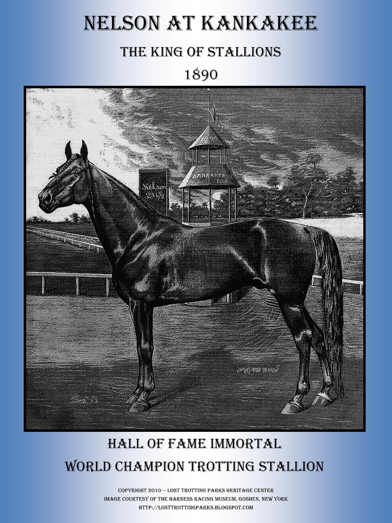 Maine's Champion Trotting Stallion — Nelson 4209 — Crowned King of the Stallions in 1892