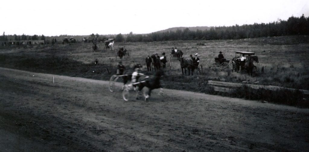 Horses on the Track sn