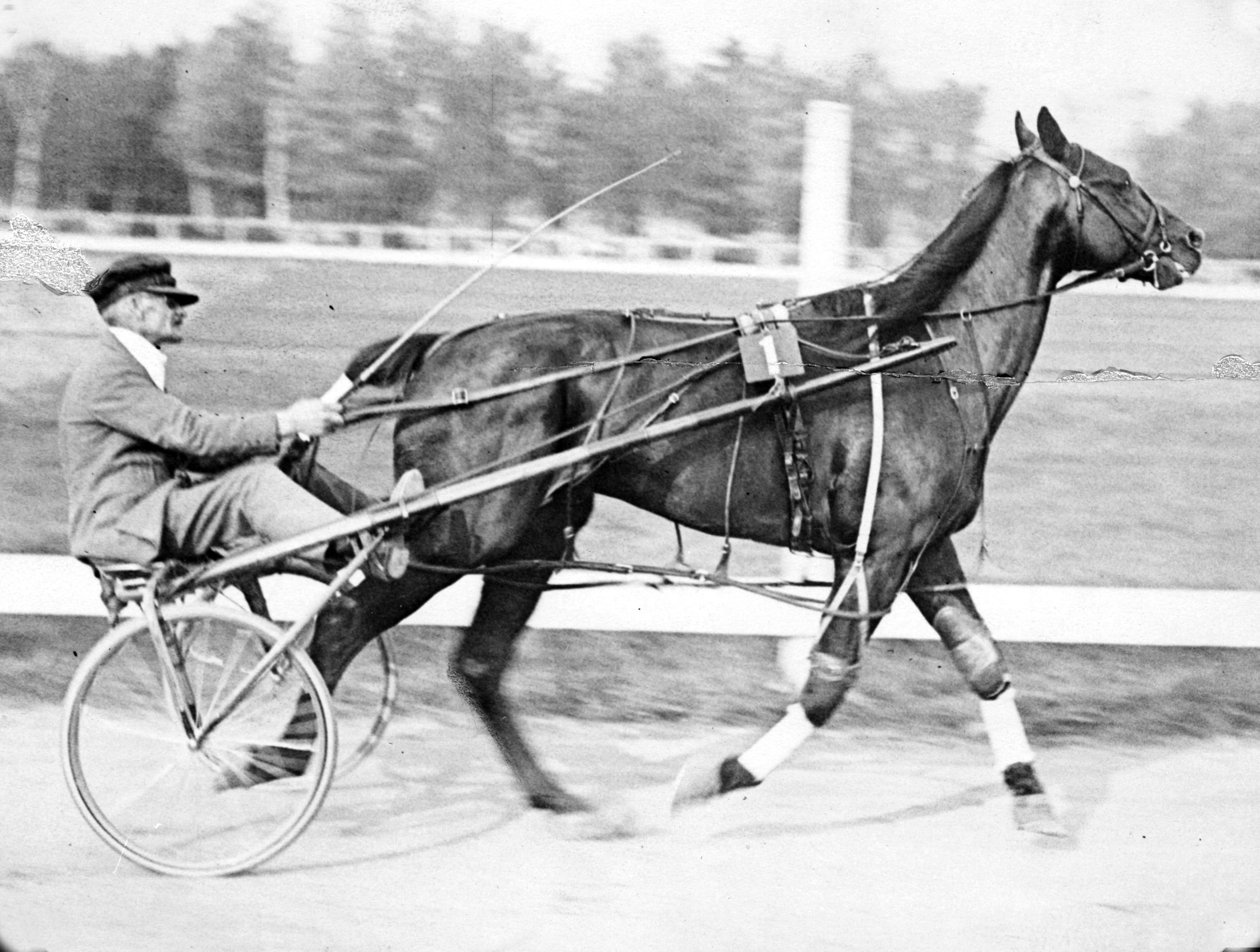 When the Standardbred was in the Consciousness of the Maine People — The Year 1922